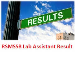RSMSSB Lab Assistant Result 2017