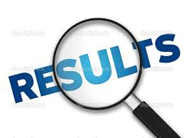 Government of Goa Accountant Results