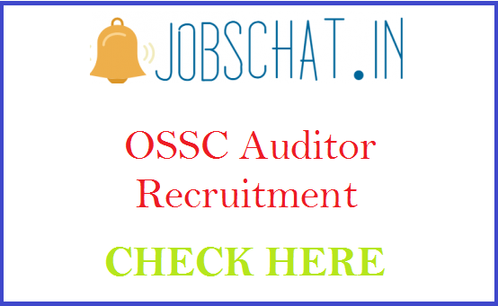 OSSC Auditor Recruitment
